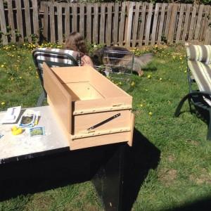 Backyard Gardening Reuse Repurpose